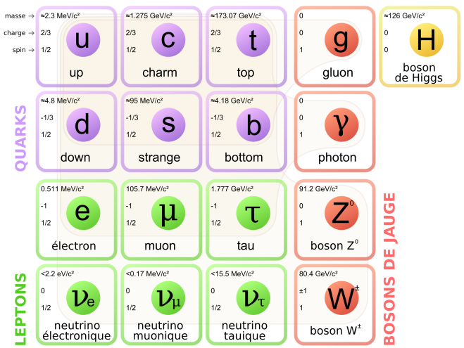 Standard_Model_of_Elementary_Particles-fr.svg (2)
