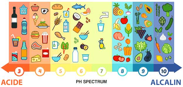 tableau-aliments-equilibre-acido-basique
